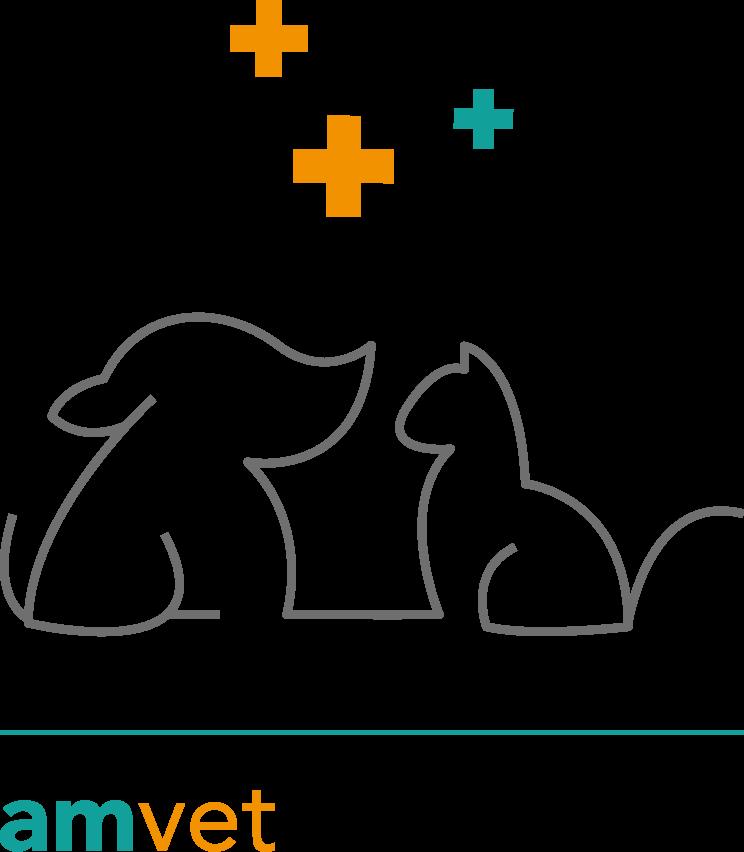logo d'amvet